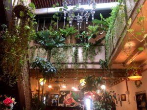 マラッカのカフェWild Corianderのおしゃれな内装